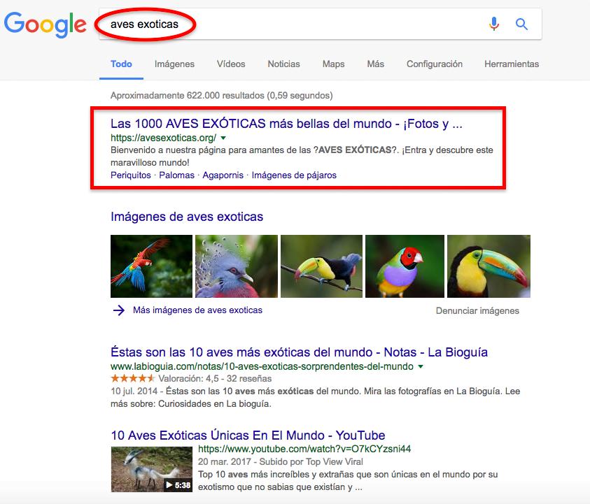 cómo posicionar sin enlaces