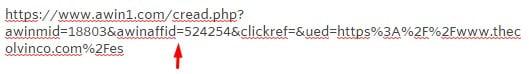 URL promoción marketing de afiliación